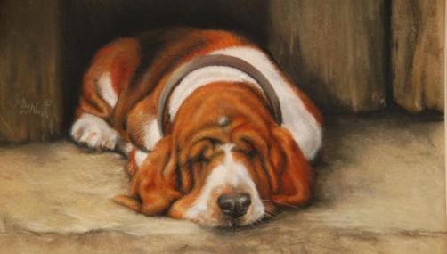 Los perros también sueñan