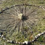 Rituales y círculos