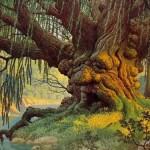 La magia de los árboles en el horóscopo celta